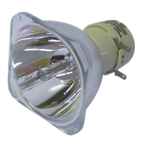 PHILIPS-UHP 190/160W 0.9 E20.9 IC Λάμπα χωρίς την βάση